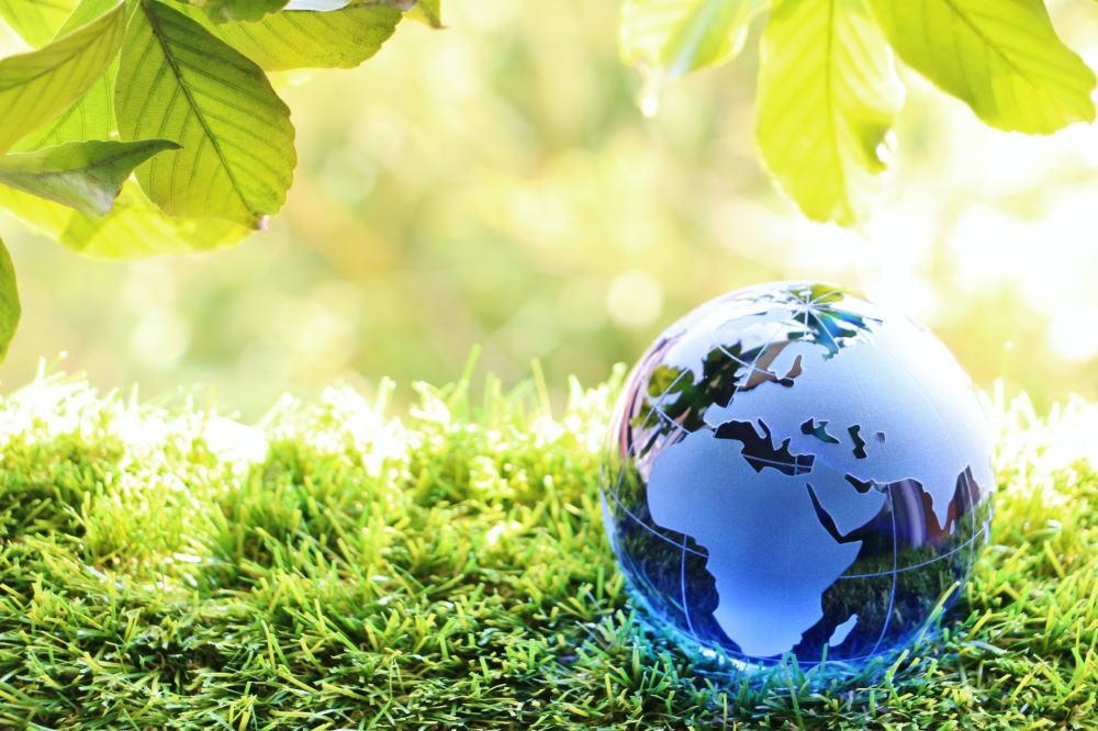環境を守る仕事をしよう! なり方ガイド